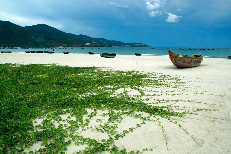 Top 5 Beautiful Beaches in Da Nang